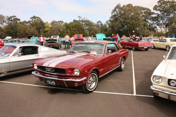 My 1966 Ford Mustang - David Evans