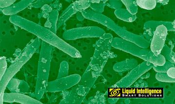 Biomass Bug Liquid Intelligence Diesel Biocide
